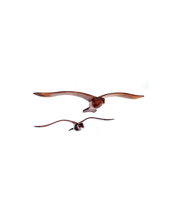 Le goeland en vol en bois noble