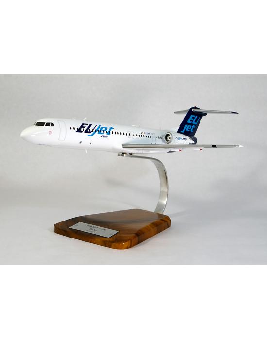 Maquette avion Fokker F100 EU Jet en bois